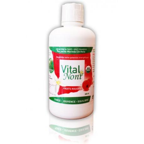 Vital Noni Fruité 100% Pur Jus de Noni Certifié BIO (1 bouteille)